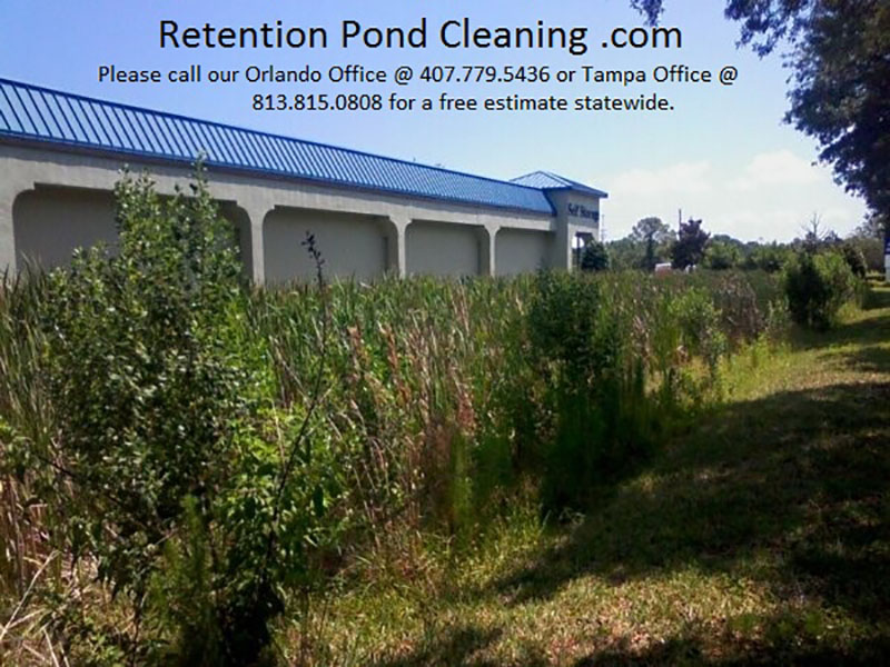 Home tampa retention pond cleaning for Professional pond cleaners